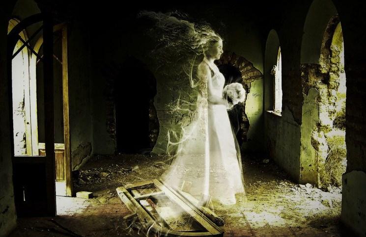 робкое привидениями как выглядит